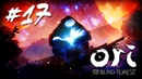 Ori and the Blind Forest 17 - Забытая роща