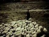 FABRIZIO DE ANDRE' La domenica delle salme official videoclip HD