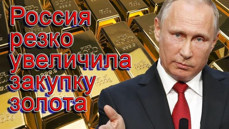 Золото и русофобы: зачем Россия скупает золото в больших объёмах