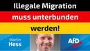 Martin Hess AfD Illegale Migration muss unterbunden werden!