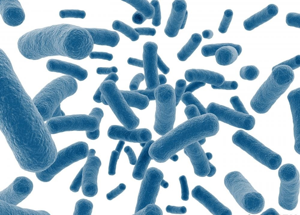 Стафилококковая инфекция вызвана бактериями Staphylococcus.