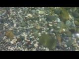 Юрий Антонов - Море (720p).mp4