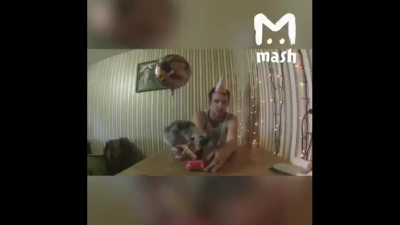 Белорус высидел гуся из яйца и завел с ним канал на YouTube. Теперь они все время вместе и на видео баня, попойки, Kiki Challen