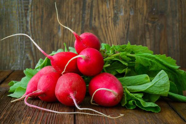 Меню для редиски: чем подкормить растение после всходов в теплице и в открытом грунте