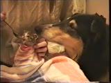 Нюша с малышкой Маней