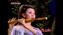 Sao Tau Hay - китайская традиционная музыкам