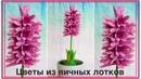Цветы из яичных лотков Гиацинт Flowers made of egg box Hyacinth
