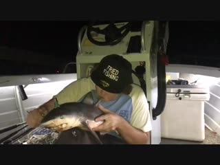 Fisherman uses dead shark as a bong to tune of Baby Shark