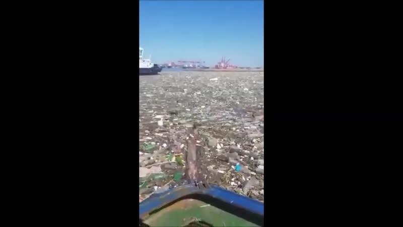 Environnement Le port de Durban (Afrique de sud)