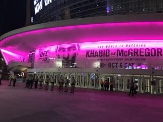 Массовая драка фанатов после боя : Хабиб vs Конор на UFC 229.