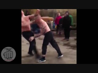 Street Fight Vines #359