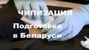 Электронный концлагерь для Белоруссии и всего мира. Начертание антихриста 666. Широким путём в АД