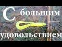 Ловля на отводной поводок под Киевом