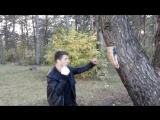 прогулка по лесу,место 2