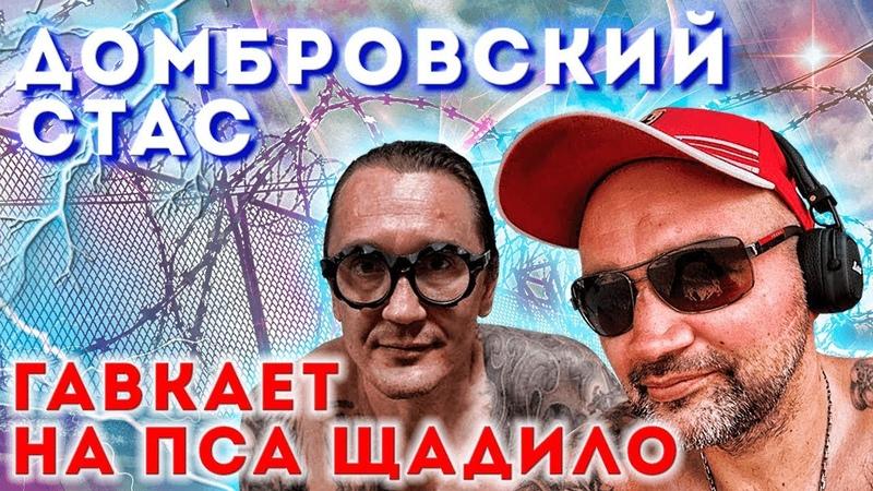 Стас Домбровский гавкает на пса Андрея Щадило.