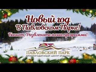 Новый год в Павловском Парке