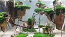 Hồ thủy sinh đá gỗ hóa thạch bay kiểu Avatar . Flying petrified wood - 36x22x26 tank.