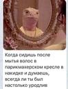 Андрей Чекаев фото #3