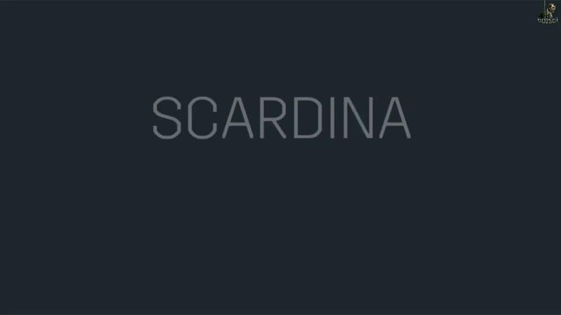Бокс. Daniele Scardina vs Henri Kekalainen. 08.03.2019