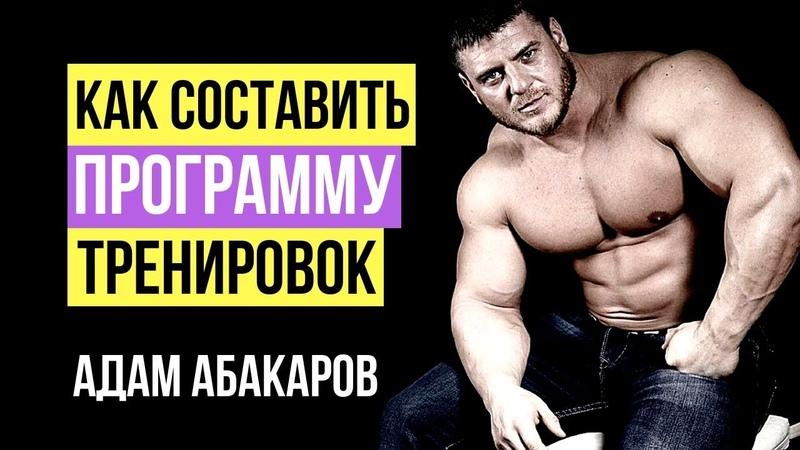 Как составить программу тренировок Адам Абакаров в гостях у Александра Линченко в студии BodyPit ТВ