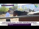 Как работает школа мастеров трюков в Кыргызстане