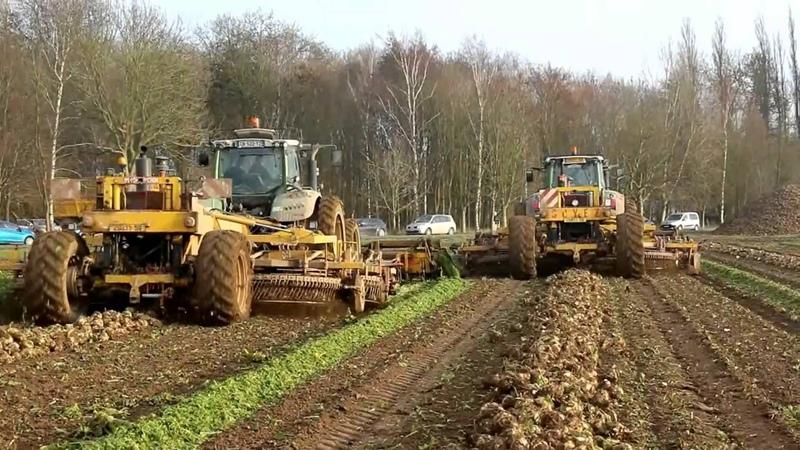 WORLD BIGGEST BEET - Harvester 24 Rows- JPS Soyez