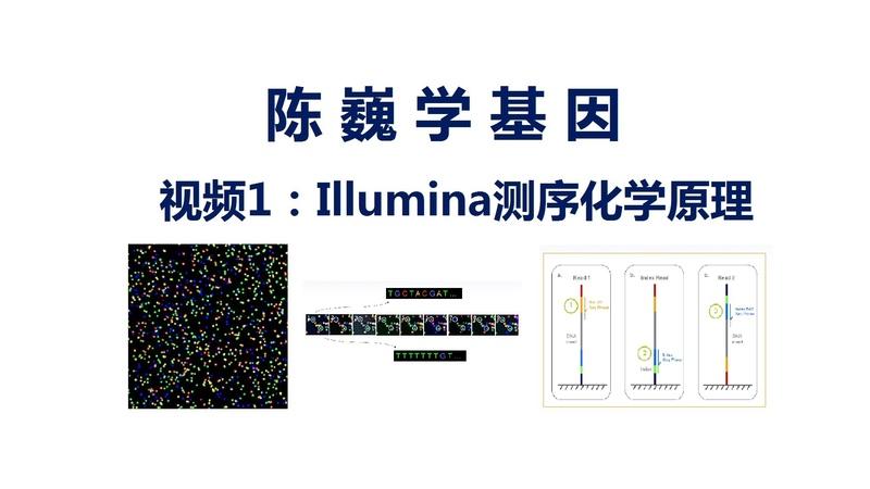 陈巍学基因 视频1:Illumina测序化学原理