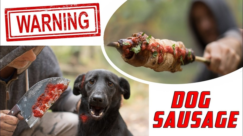 Dog Sausage! - DELICIOUS! You Wont Believe!