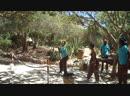 тунис 2016 зоопарк 40 градусов туниские танцоры