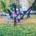 star_oksy video