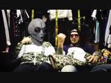Обзор пуховика и парки (Alien Shop)
