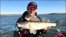 Рыбалка поздней осенью. Поехали за щукой, а попали на хорошего судака!
