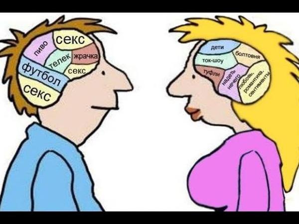 Отличие мужчин и женщин в общении друг с другом. Любопытные отличия между мужчинами и женщинами.