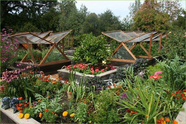 Огород с изюминкой. Идея оформление огорода, как элемент ландшафтного дизайна, не нова. Но сейчас она входит снова в моду и огородники стараются не просто выращивать растения. но превратить этот