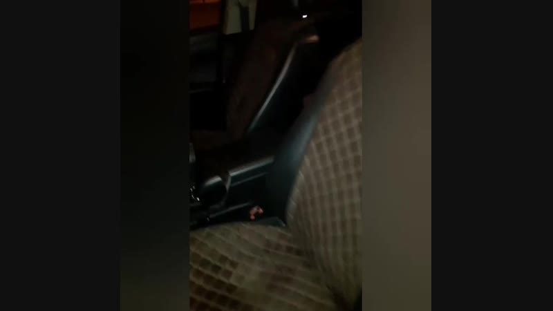 Накидки из Алькантары на Toyota Camry