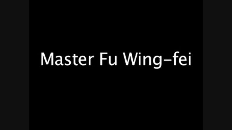 Tai Chi Master Fu Wing fei Applications
