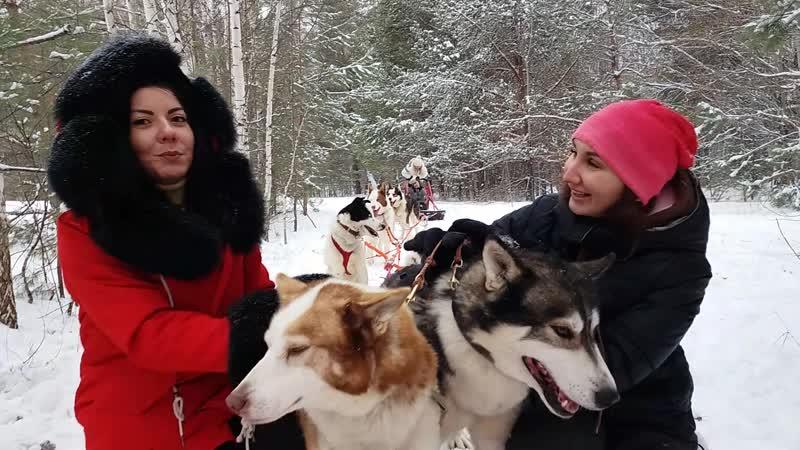 Ольга и Оксана о катании на собаках с Казанской экспедицией