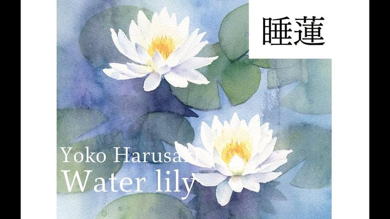 Harusaki Yoko watercolor[Lily] 春崎陽子 水彩画 睡蓮の描き方