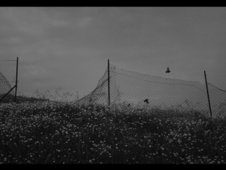 Lil peep - praying to the sky  | (music video) перевод