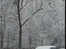 Зимняя сказка в Бескудниково и Восточном Дегунино 13 февраля 2019
