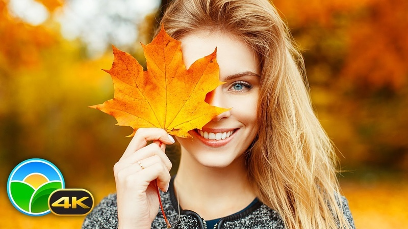 4K Stunning Fall Colors Soothing Instrumental Music 🍁🍂 Beautiful Autumn Leaves - 4K UHD Nature