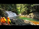 Canto de Pájaros-Sonido de agua-Sonidos de naturaleza-sonido relajante-Estudiar-Meditar-Dormir-Spa