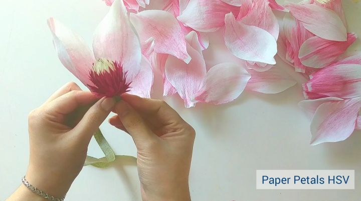 """Thao Hoang 