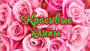 ОБАЛДЕННО КРАСИВЫЕ ПЕСНИ И КЛИПЫ ШАНСОН! НОВИНКА 2018!