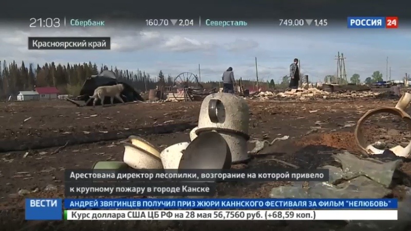Новости на Россия 24 • Директор Канской лесопилки арестована