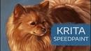 Krita Speedpaint | Pet Portrait Commission