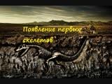 Появление первых скелетов — Андрей Журавлев