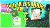 PRO HELPS NOOB Pet Simulator