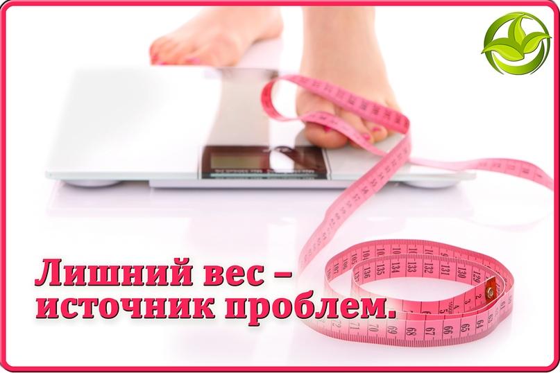 Рассчитать индекс массы тела   новости   gloss. Su: женский hi-tech.