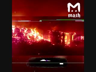 Под Хабаровском сгорела частная ферма с животными